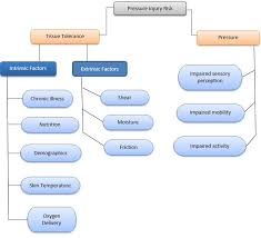 Clinical Guidelines (Nursing) : <b>Pressure</b> injury prevention and ...