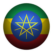 Round Glossy Button Flag Ethiopia Stock Vector Royalty Free
