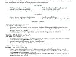 Real Estate Agent Resume No Experience Real Estate Salesperson