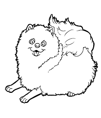 Pomeranian Coloring Pages Puppy For Kids Pinterest Bright Cute Baby