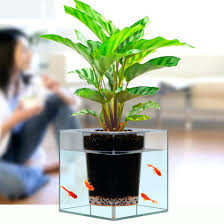 office flower pots. Office Plant Pots Large Indoor Drip Irrigation Flower Pot 8