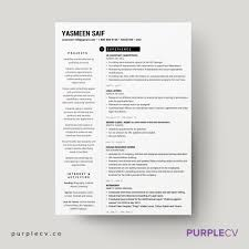 page professional resume template resume templates design 2 page professional resume template