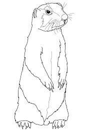 Prairie Dog Coloring Pages To Print Coloring Pages For Kids In