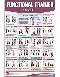 Back Workout Chart Step By Step Functional Institutional Home Gym Poster Chart Advanced