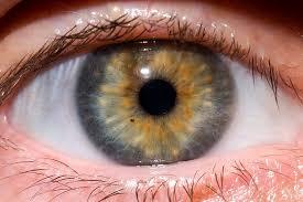 human eye photography tips
