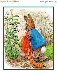 May Sale Peter Rabbit Drops The Onions By Beatrix Potter Counted Cross Stitch Chart Pattern Free Shipping