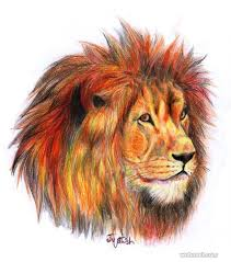 lion drawing color. Brilliant Lion With Lion Drawing Color N