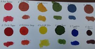 Adirondack Alcohol Ink Colour Chart Ink Stains Alcohol Inks Adirondack Vs Pinata