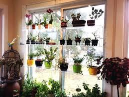 herb shelf garden shelf window cable window shelf outdoor herb garden shelves herb shelf garden
