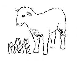 Small Picture sheep coloring pages to print year of sheep 2017 Archives gobel