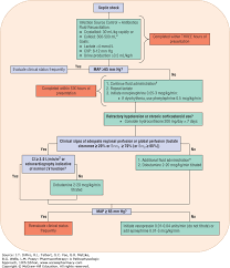 Use Of Vasopressors And Inotropes In The Pharmacotherapy Of
