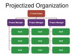 Project Management Structure Lamasa Jasonkellyphoto Co