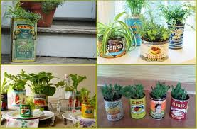 Creative recycled planters 3