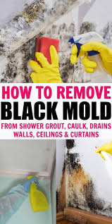 effective s to clean black mold