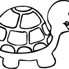 Small Picture adult turtle coloring pages turtle coloring pages pdf ninja