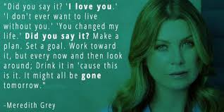 Grey's Anatomy Love Quotes Enchanting 48 Grey's Anatomy Quotes That Prove Why It's The Best Show Ever