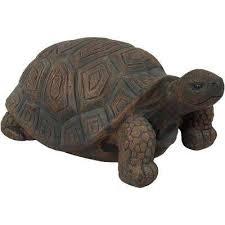 tanya the tortoise indoor outdoor lawn and garden statue