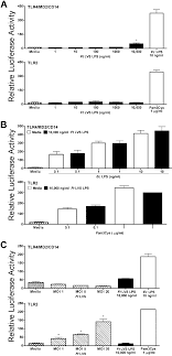 Response Of Hek293t Cells Transiently Transfected With