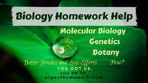 biology homework help biology assignment help science homework  biology assignment help for students