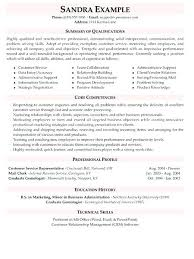 Examples Of Professional Summary For Resume Example Customer Service ...