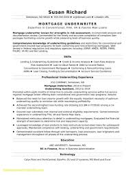 Great Objectives For Resumes Fresh Career Objectives Resume