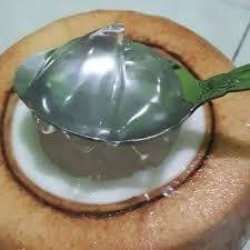 Buah yang digunakan juga bisa diatur sesuai selera atau stok di kulkas. Jual Degan Jelly Kota Bogor Glowboutiqueen Tokopedia