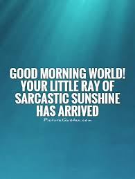 Good Morning World Quotes Best of Good Morning World Your Little Ray Of Sarcastic Sunshine Has
