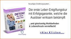 Update Hepatologie 2017 dizin-aktuell-esslingen