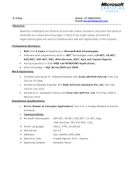 Server Resume Resume For Your Job Application