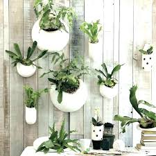 wall mount planter wall planter indoor metal wall planters indoor metal wall plant holder terrarium design
