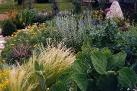 gardening on texas gardens 13 mosaic gardens journal