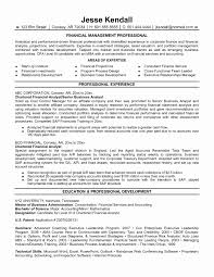 Resume Samples For Experienced Finance Professionals Best Resume