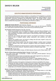 Postdoctoral Fellow Resume Samples Academic Cover Letter Example