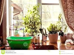 garden kitchen window garden kitchen window garden kitchen window garden kitchen window garden kitchen window s