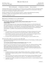Vp Business Development Officer Resume Professional Experience