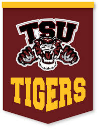 Image result for texas southern university
