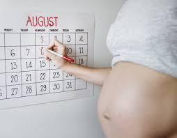 Pregnancy Due Date Calculator Pregnancy Kidspot