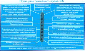 Принципы семейного права Схема Принципы семейного права