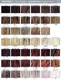 Raquel Welch Wigs Color Chart Trendcolors Of Ellen Wille And Raquel Welch Accessories