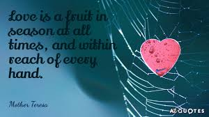 Mother Teresa Quotes On Love Stunning Mother Teresa Quote Love Is A Fruit In Season At All Times And