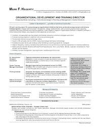 Professional Summary Examples Fascinating Summary For Resume Resume Professional Summary Examples Elegant