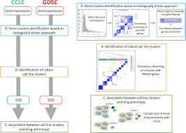 New Insight For Pharmacogenomics Studies From The