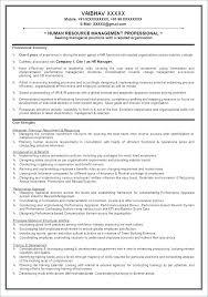 Skills Based Resume Template Personal Resume Template Functional Resume Template Personal