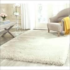 furry rug big