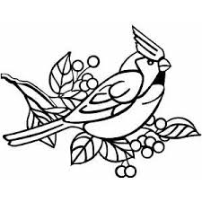 Small Picture Angry Cardinal Bird Coloring Page