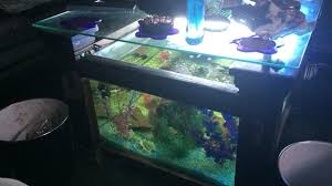for one fish tank coffee table