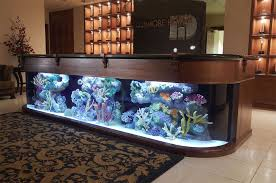 office fish tank. Design For Desk Fish Tank Office In Your Home