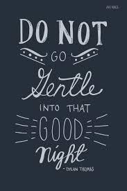 do not go gentle into that good night response essay