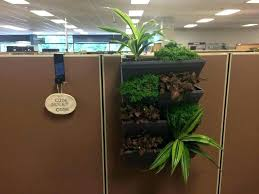 wall planter indoor wall planter indoor cube kit indoor cubical vertical garden living wall planter kit wall planter