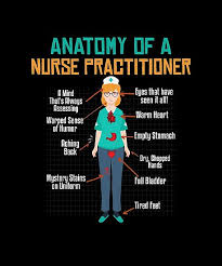 Anatomy Of A Nurse Nurse Shirts Funny Nurse Appreciation Magnificent Funny Nurse Quotes